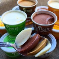 Gluten-free ice cream from Forte Gelato